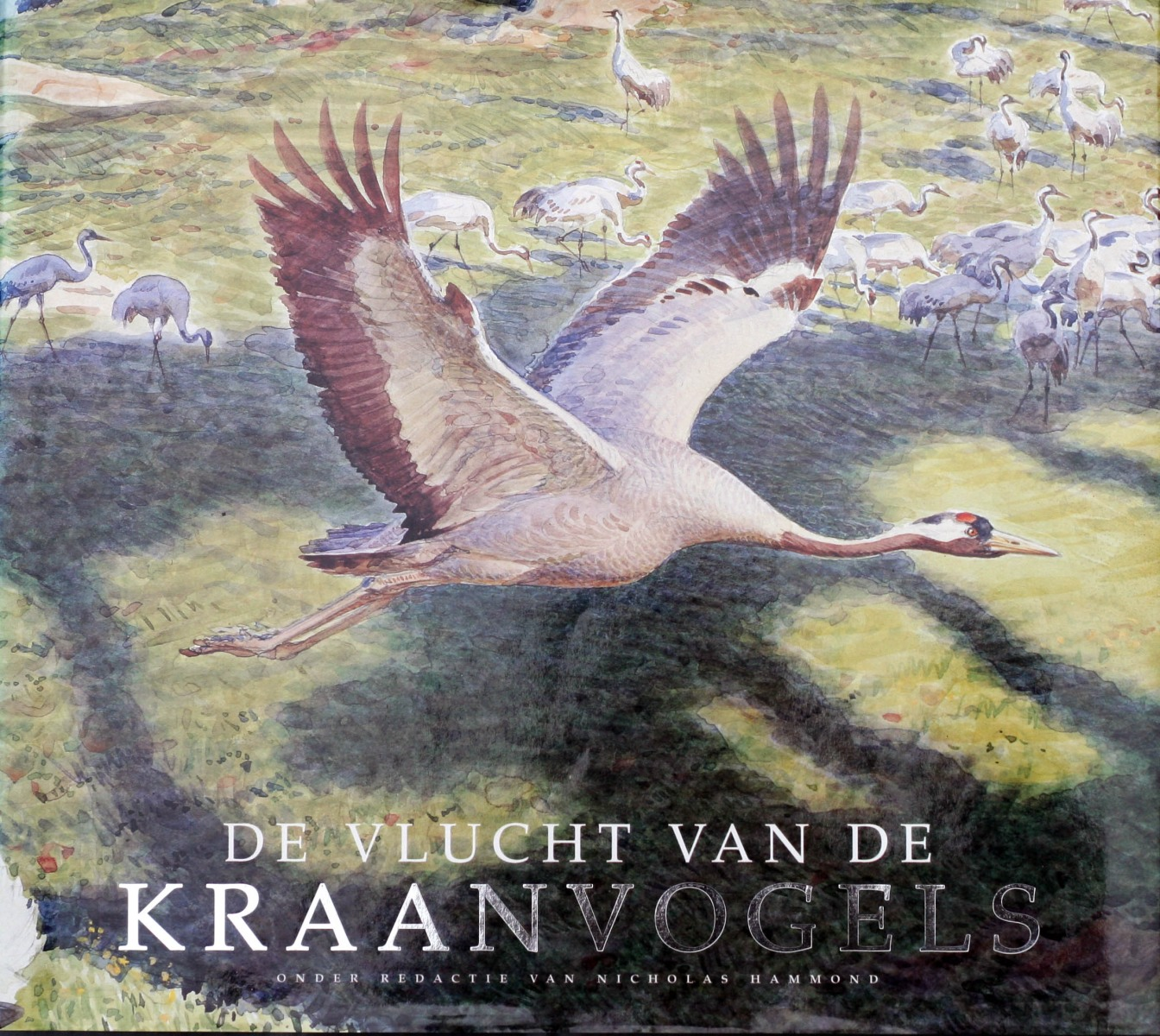 De-Vlucht-van-de-Kraanvogels-cover-1994