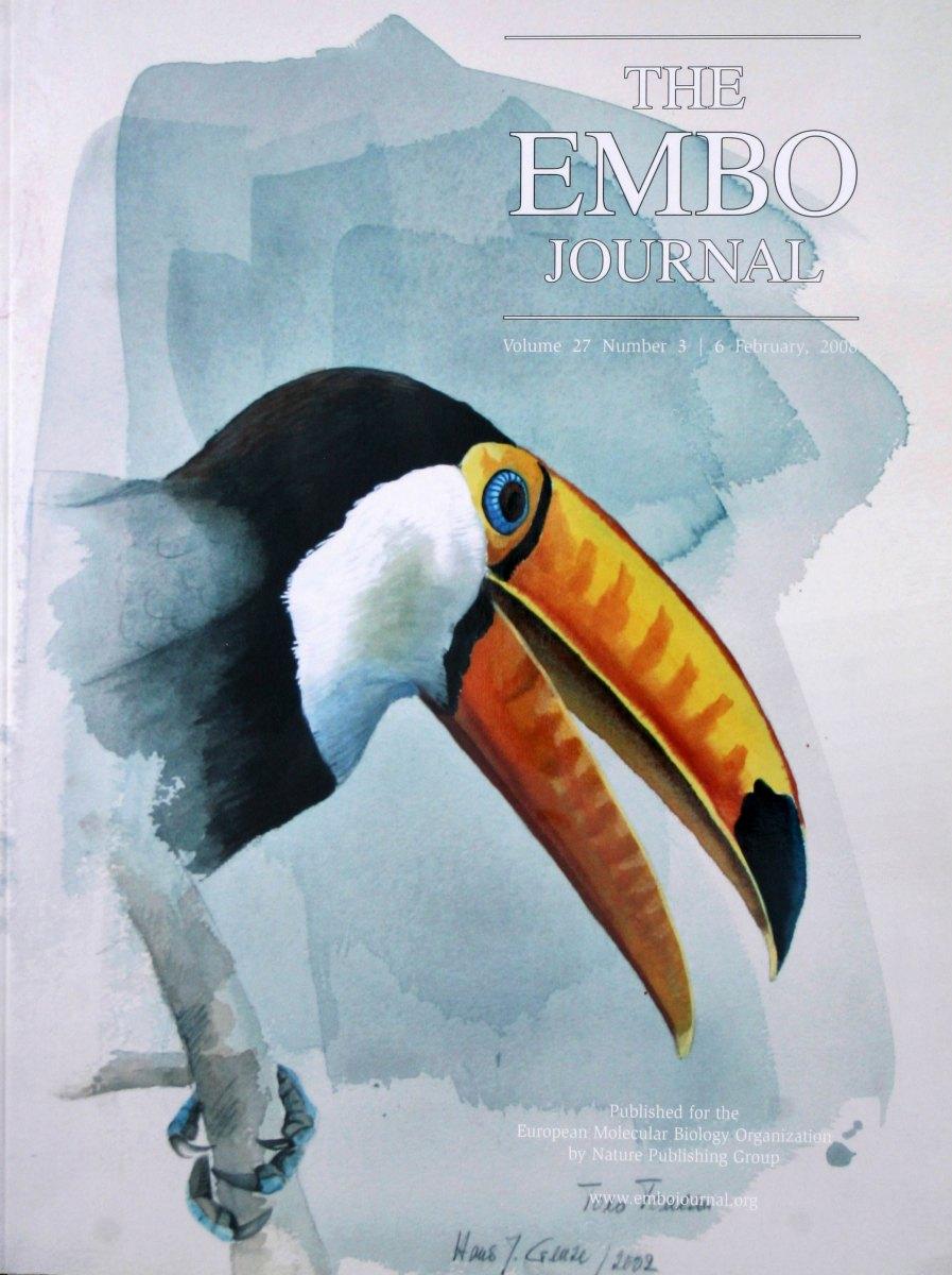 EMBO-J.-27-3-2008