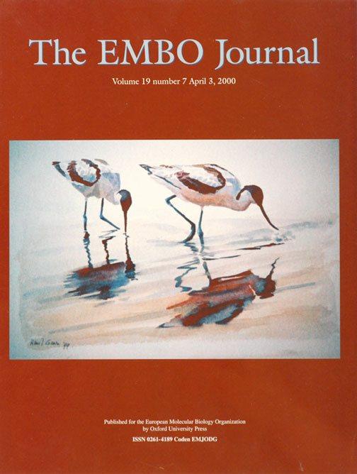 EMBO-J.1972000