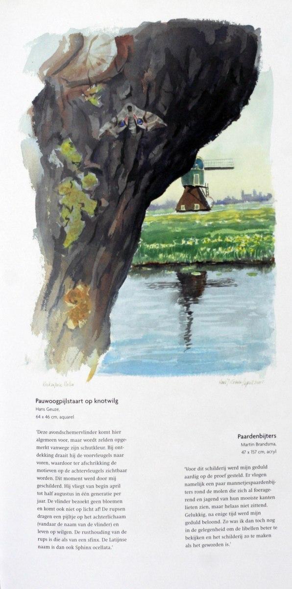Wieken-Wind-en-Weidevogels-2006-4