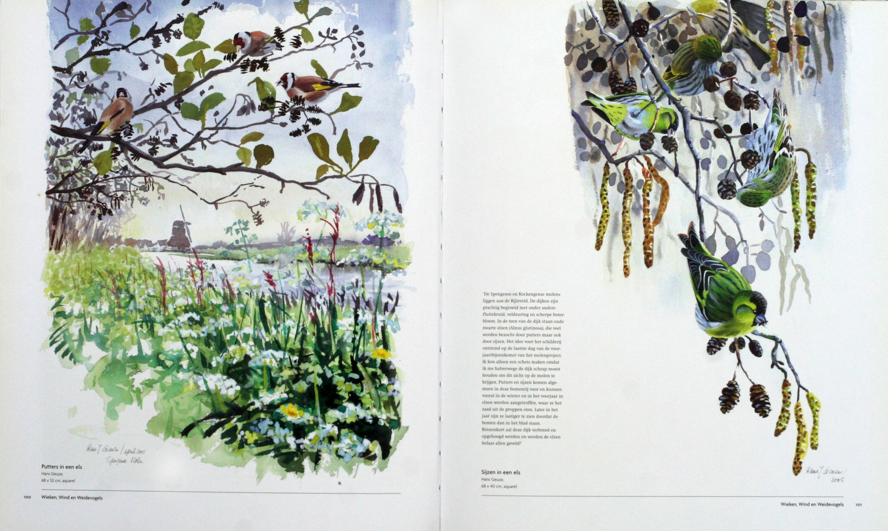 Wieken-Wind-en-Weidevogels-2006-5