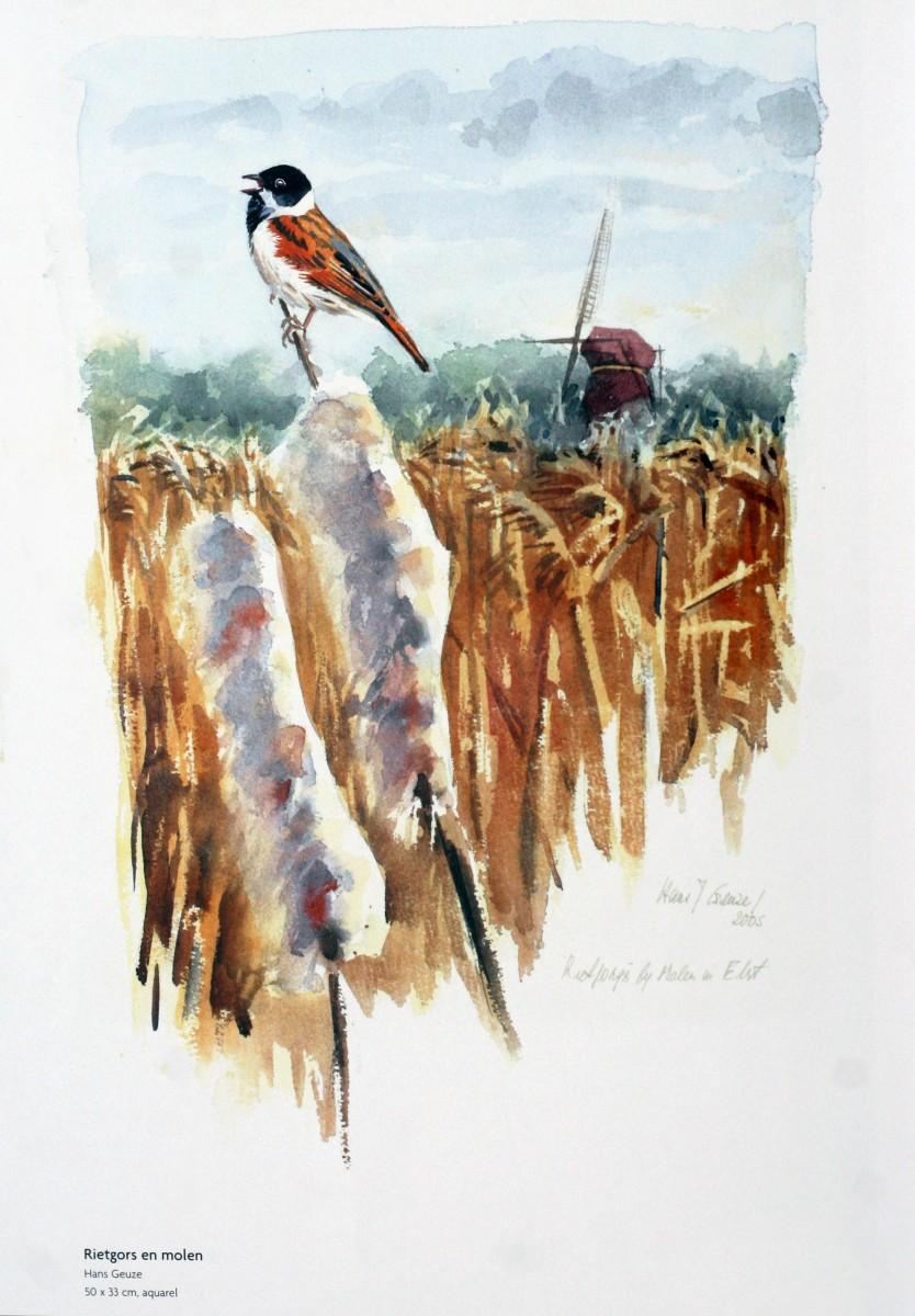 Wieken-Wind-en-Weidevogels-2006-7